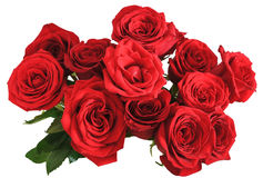 Above view bouquet of red roses isolated Royalty Free Stock Photography