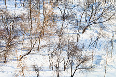 Above view of city garden covered by snow Royalty Free Stock Images