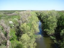 The spring river, view from the top down. From above view down to the river with planty of fresh green trees on a bank Royalty Free Stock Photography