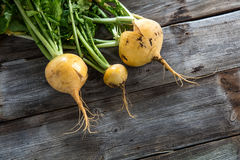 Above view of genuine sustainable yellow turnips with cracks Royalty Free Stock Photos