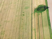 Above view of green and yellow harvested fields Royalty Free Stock Image