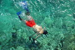 Above view of man snorkeling Stock Photography
