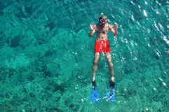Above view of a snorkeling man Royalty Free Stock Photo