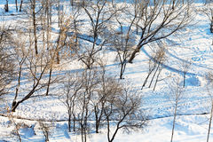 Above view of snowy urban park in winter Stock Image