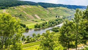 above view of valley of Mosel river in summer Royalty Free Stock Image