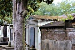 Above Zmielony cmentarz zdjęcie royalty free