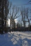 Abovyan stad i vinter Arkivfoton
