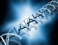 Abrégé sur ADN Photos stock