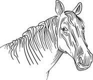 Abrégé sur dénommé tête de cheval de course de brosse illustration de vecteur