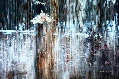 Abrégé sur froid pluie photos libres de droits