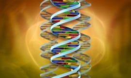 Abrégé sur helice d'ADN Image libre de droits