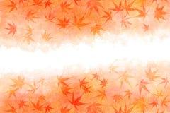 Abrégé sur japonais feuille d'érable d'automne sur le fond rouge de peinture d'aquarelle Image libre de droits