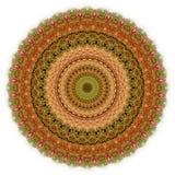 Abrégé sur 2 longissima d'Echeveria de forme circulaire Photos stock