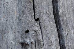 Abrégé sur nature – bois naturellement superficiel par les agents photographie stock
