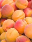 Abrégé sur organique nectarines Images stock