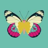 Abrégé sur pourpre aile de papillon sur le fond de couleur verte Image stock