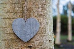 Abrégé sur tronc d'arbre de coeur d'amour Image libre de droits