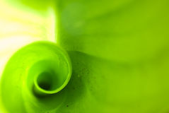 Abrégé sur vert tache floue Images stock
