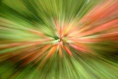 Abrégé sur zoom d'automne photo stock