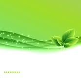 Abrégez le fond d'eco Image stock