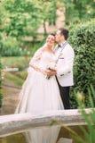Abraçando pares do recém-casado perto da fonte O noivo está beijando a noiva na testa foto de stock royalty free