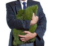 Abraço da grama Imagens de Stock