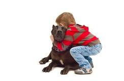 Abraços amigáveis uma criança e um cão Fotos de Stock