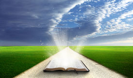 Abra a Bíblia no campo. Fotos de Stock Royalty Free