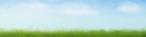 Abra bandeira do campo de grama a meia foto de stock