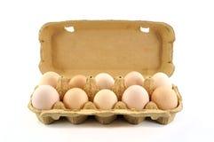 Abra a caixa com os dez ovos frescos Imagens de Stock Royalty Free