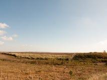 Abra a cena da paisagem da região pantanosa com céus azuis, nuvens, e gras Imagens de Stock Royalty Free
