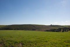 abra el campo en campo en primavera Imagen de archivo