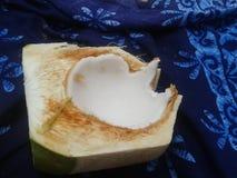 Abra el coco en la playa en Koh Phangan Imagenes de archivo