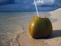 Abra el coco en la playa tropical y por el agua Imagen de archivo libre de regalías