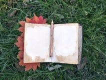 Abra el diario con las hojas de arce en la hierba Foto de archivo libre de regalías