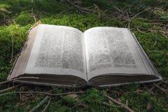 Abra el libro antiguo en musgo verde en el bosque foto de archivo libre de regalías