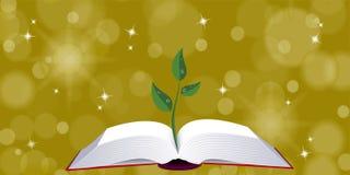 Abra el libro con el brote del árbol Fotos de archivo libres de regalías