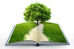 Abra el libro con la naturaleza verde