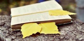 Abra el libro con la señal Foto de archivo libre de regalías