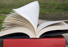 Abra el libro con las paginaciones de vuelo imagenes de archivo