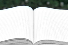 Abra el libro con las paginaciones en blanco Fotos de archivo libres de regalías