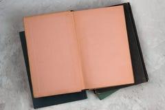 Abra el libro de la vendimia con las paginaciones en blanco foto de archivo libre de regalías