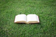 Abra el libro del vintage en parque verde Fotos de archivo
