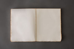 Abra el libro en el contexto gris Foto de archivo