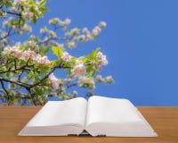 Abra el libro en la madera en el fondo de la primavera Imágenes de archivo libres de regalías