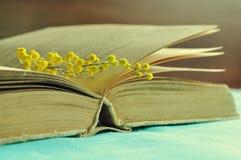Abra el libro gastado con las flores amarillas de la mimosa en la tabla bajo luz caliente - todavía de la primavera vida en tonos Imagenes de archivo