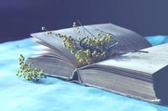 Abra el libro viejo que miente en el mantel de lino azul con las flores amarillas de la mimosa - todavía de la primavera vida en  Fotos de archivo