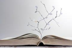 Abra el libro y el concepto de papel del árbol de las letras Imagenes de archivo