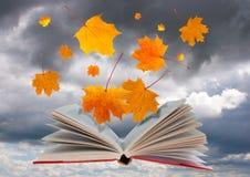 Abra el libro y las hojas de arce Imagen de archivo libre de regalías