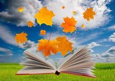 Abra el libro y las hojas de arce Foto de archivo libre de regalías